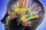 Психосоматика эпилепсии