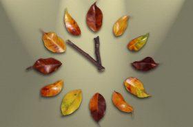 расписание семинаров Satori Healing